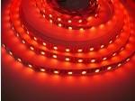 24V RGBW4v1-DW 19,2W vnitřní LED pásek záruka 3 roky