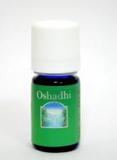 Oshadhi Vánoční hvězda, synergická směs