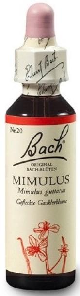 Dr. Bach Esence Mimulus