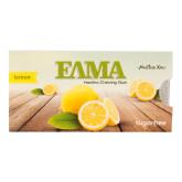 Žvýkačka s mastichou a příchutí citronu 13 g   ELMA