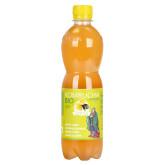 Kombucha bancha citron 500 ml BIO   STEVIKOM