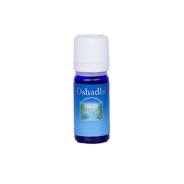 Oshadhi Oregano (Dobromysl) compacta BIO, esenciální olej