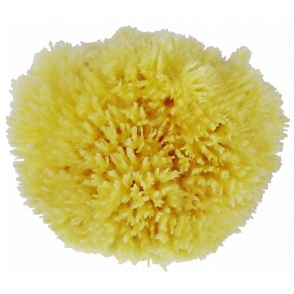 Avril Organic 100% přírodní mořská houba na tělo