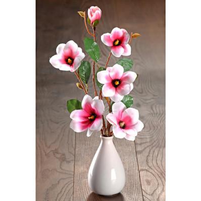 Gałązki magnolii do wazonu