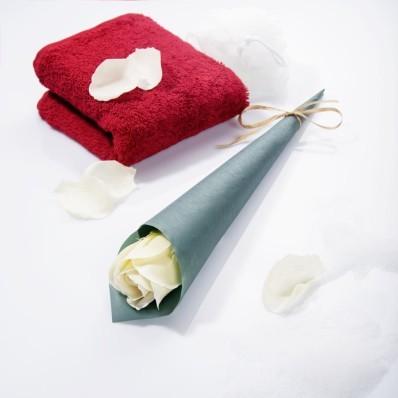 Mýdlová růže