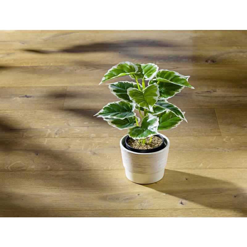 Umelá rastlina