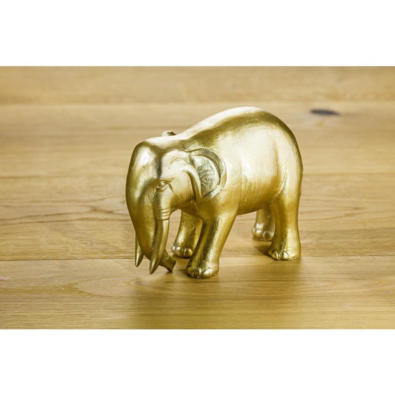 Slon, zlatistá