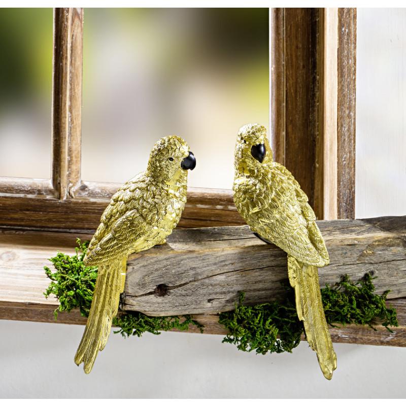 A. Papagáj