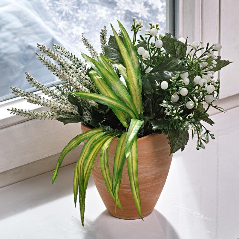 Trio zimných rastlín