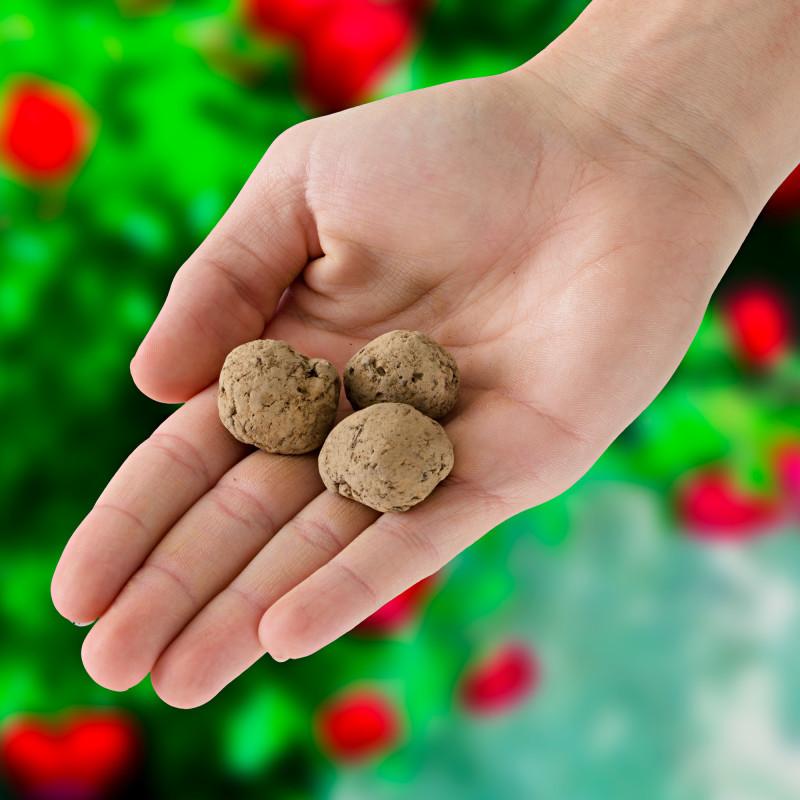 3 kúzelné guľôčky so semenami