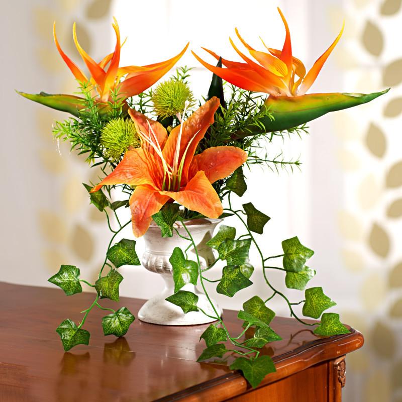 Strelícia v kvetinovej čaši