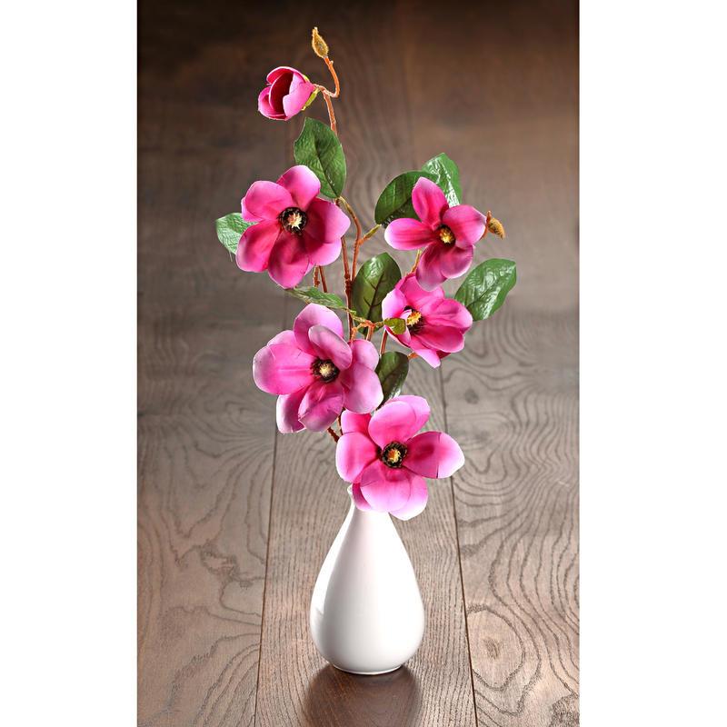 Gałązki magnolii do wazonu onerror=