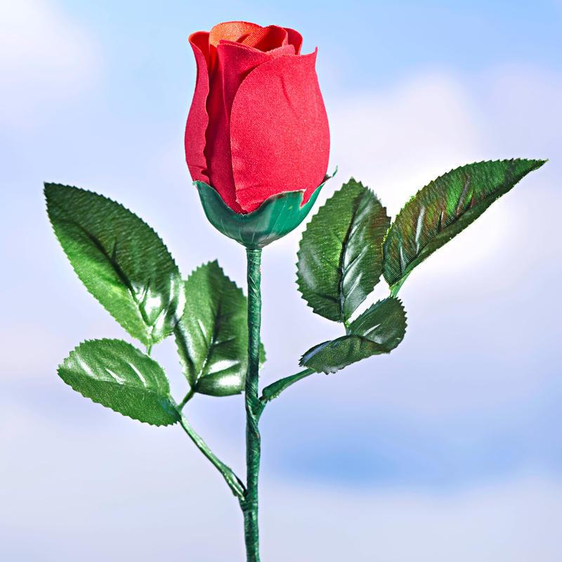 Mluvící narozeninová růže onerror=