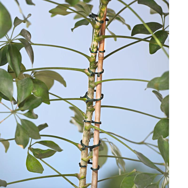 24 klipsů na vázání rostlin onerror=