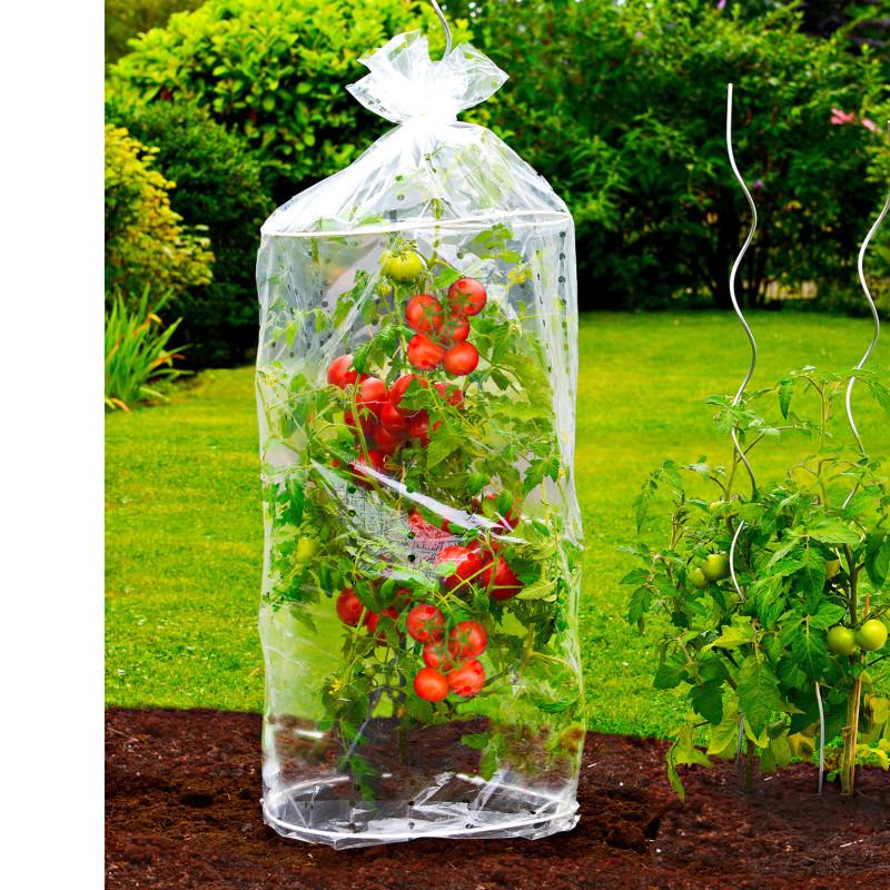 Mini szklarnie do uprawy pomidorów, 2szt onerror=