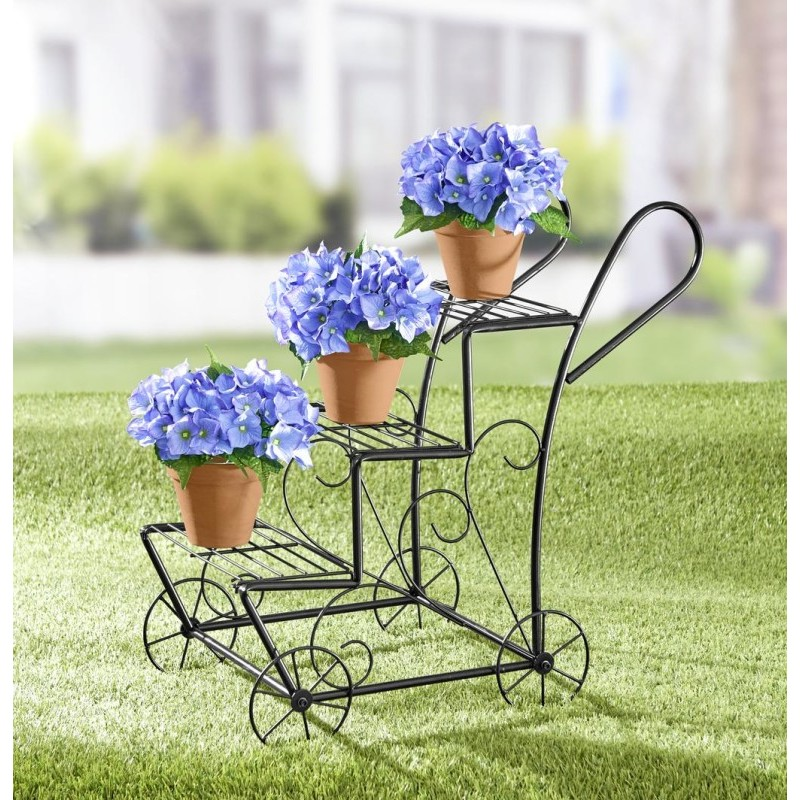 Hortenzia, modrá