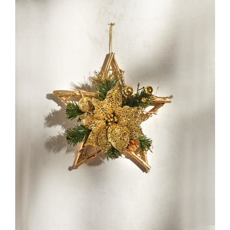 Vánoční hvězda onerror=