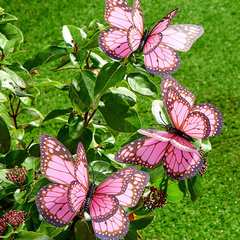 3 motýli onerror=