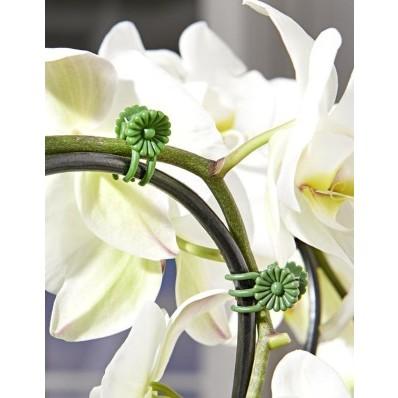 30 klipsov na kvetiny