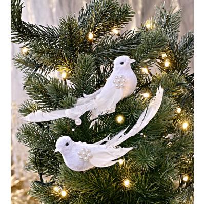 4 holubice s peřím