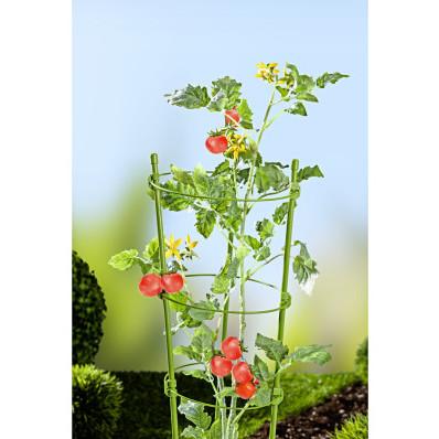 6-dielna podpera pre rastliny