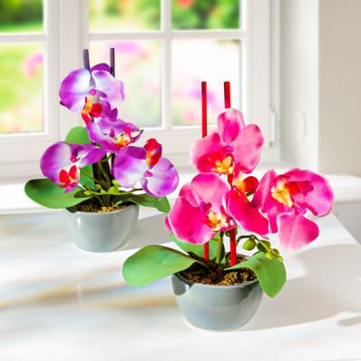 """2 aranžmány """"Orchidea v kvetináči"""""""