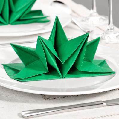 12 zložených obrúskov, zelená