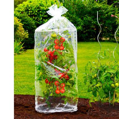 Mini szklarnie do uprawy pomidorów, 2szt