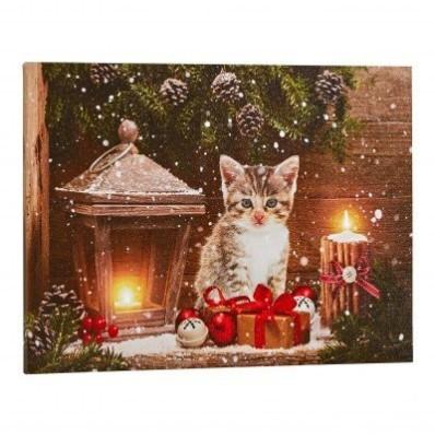 Obraz s LED žiarivkami, motív mačky