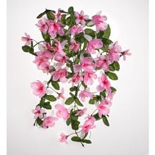 Závěsná kytice fuchsií