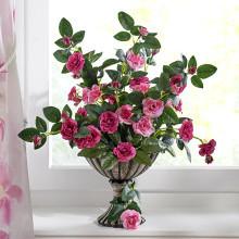 Divoké ruže v kvetináči