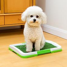 Toaleta pre psov