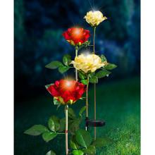 Solárna ruža, červená