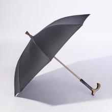 Vychádzková palica/dáždnik 2 v 1