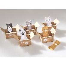 """5 poznámkových bloků """"Koťátka"""""""