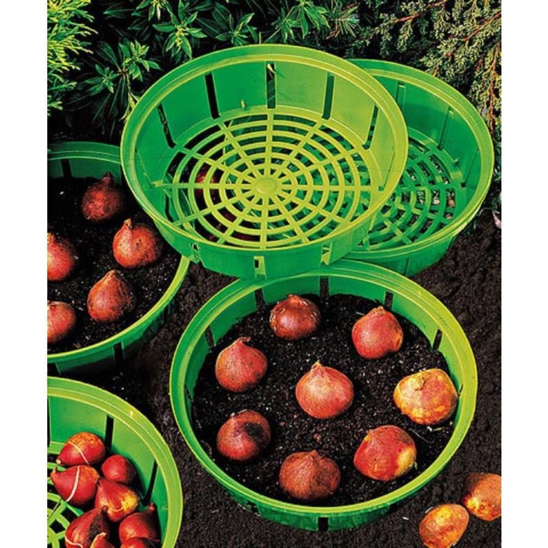 Košíky na sadenie cibuľoviny